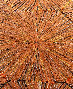 Sunshine vloerkleed detail2 - Brokking Vloerkledenspecialist