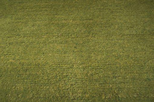 Berber green detail Brokking Vloerkledenspecialist